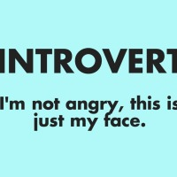 WARNING: Who is an introvert? A shout-out.