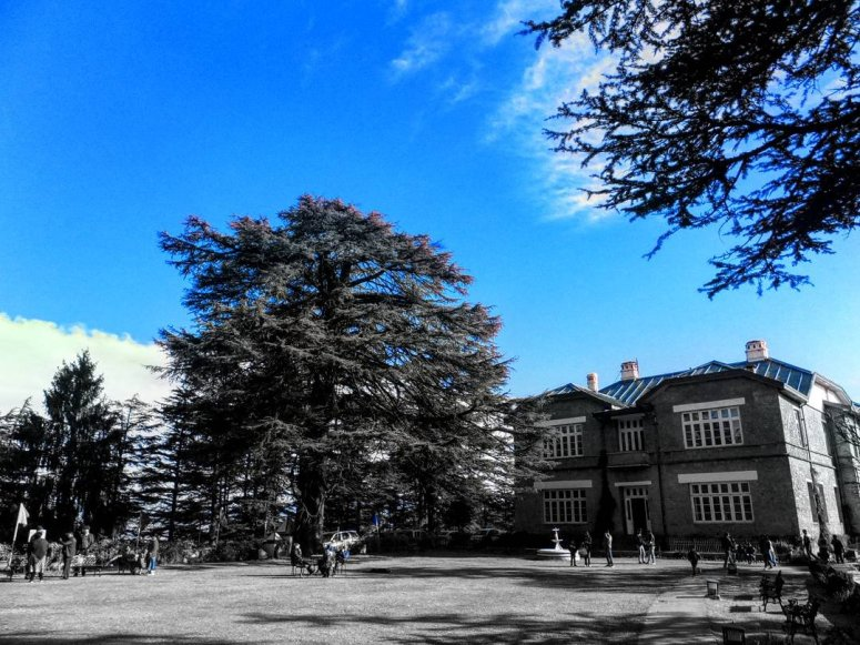 Chayal Palace on the mountain top
