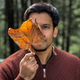 Leaf clad author