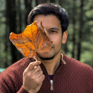 Leaf clad author