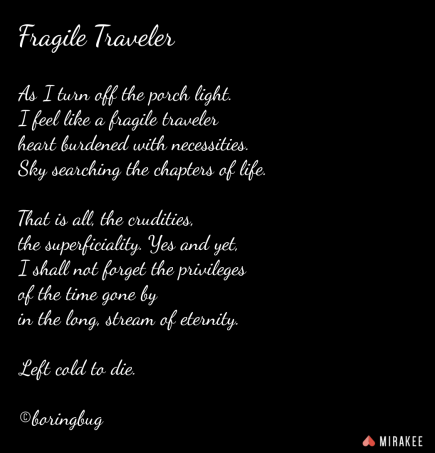 Fragile Traveler